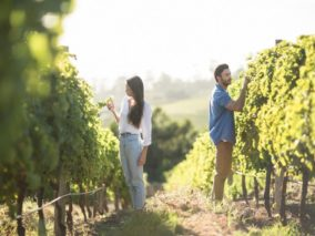 Explore all the great options for weekend getaways to VA for couples.